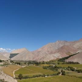 Valle de Elqui & Pisco Elqui