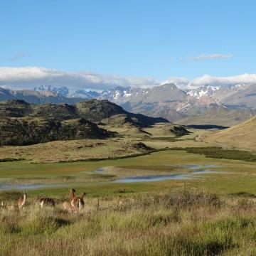 Parque Patagonia (Chili & Argentine)