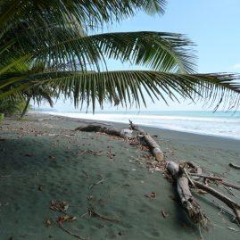 Playa Carate & Bahía Drake – Península de Osa