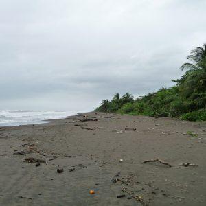Playa - Parque Nacional