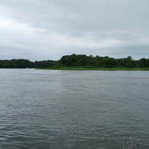 Río Tortuguero - Parque Nacional
