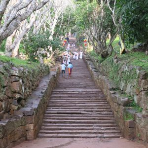 Escaliers menant au site