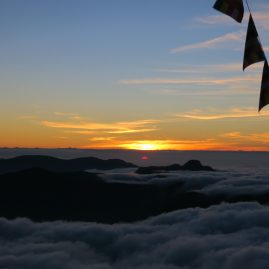 Adam's Peak – Peak Wilderness Sanctuary