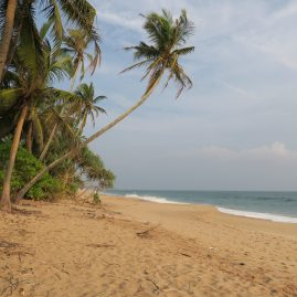 South Coast : from Tangalle to Colombo
